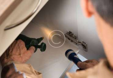 How to Choose Your Seattle Pest Control Company